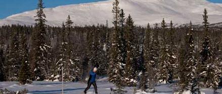 Åre är en fin skidort