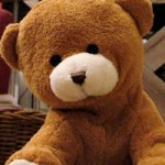 En kramgo teddybjörn