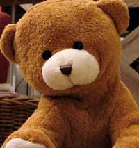 Allt om nallebjörnar – bakgrunden till vår älskade teddybjörn och internationella nalledagen post image
