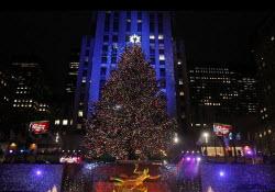 Världens kändaste julgran